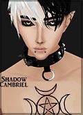 ShadowCambrielAsher