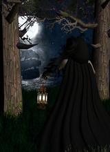 moonlight31080