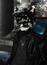 Guest_HarqFox