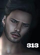 i313i