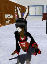 Guest_NinjaBunny3_retired_17926656