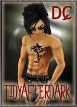 TidyAfterDark