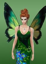 Aurilya