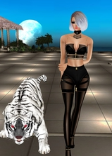 Guest_daniellejade_retired_177143376