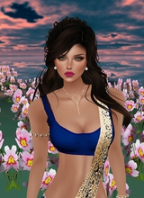 Guest_Sonal13