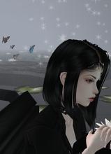 Guest_Linasofi1