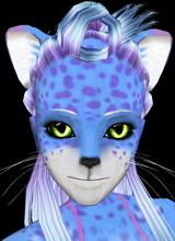 pixiecat