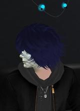 avatarbild