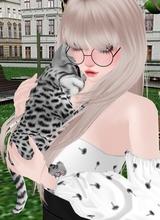 Guest_Aila363928