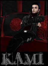 KAMI1313