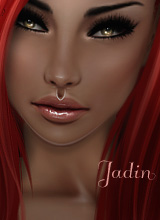 Jadin334BD