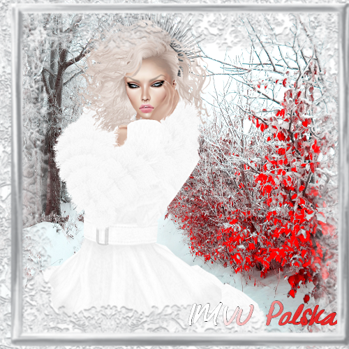 group image for IMVU Polska